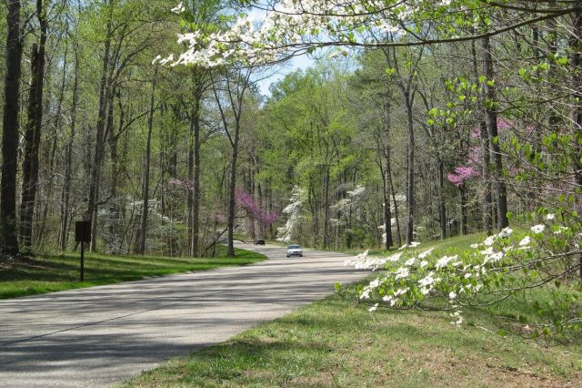 Colonial Parkway in Williamsburg